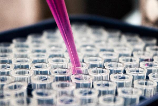 a scientist testing a vaccine